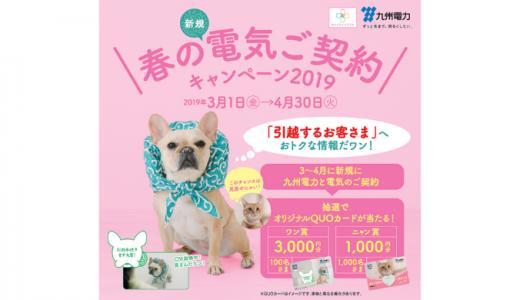 [九州電力] 春の新規電気ご契約キャンペーン2019 | 2019年4月30日(火) まで
