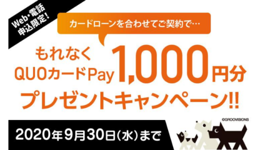 [西日本シティ銀行] 期間限定!もれなくQUOカードPay1,000円プレゼントキャンペーン | 2020年9月30日(水) まで