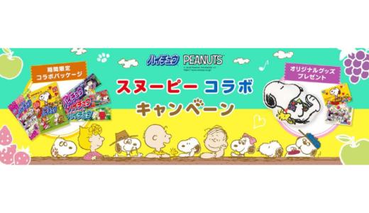 [森永製菓] スヌーピーコラボキャンペーン | 2020年9月30日(水) まで