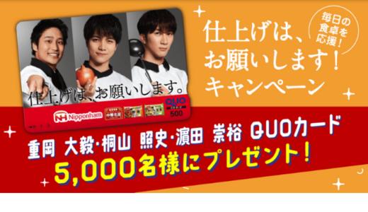 [日本ハム] 仕上げは、お願いします!キャンペーン | 2021年3月31日(水) まで